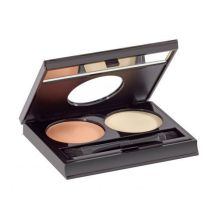 Cream & Powder Concealer Kit Apricot Teint